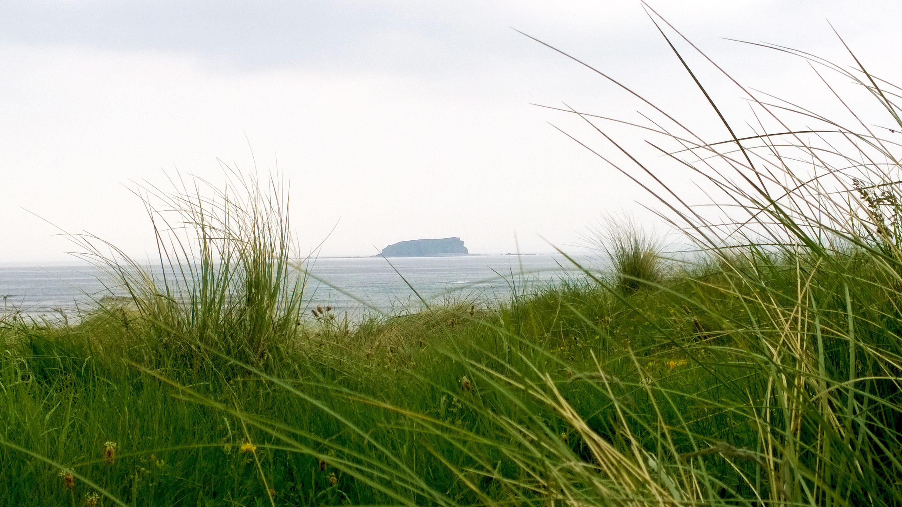 Glashedy Island, Ballyliffin